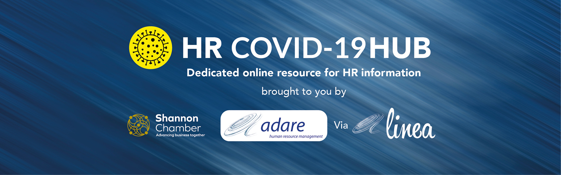 003906 SC Covid Web Hub Slider